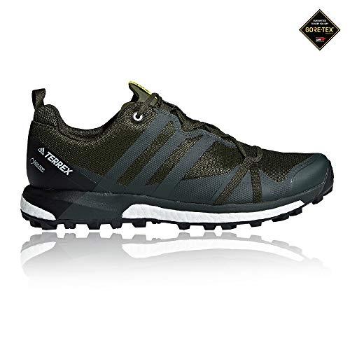 adidas Herren Terrex Agravic GTX Traillaufschuhe, Mehrfarbig